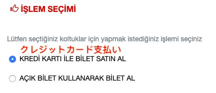 トルコ,イスタンブール,カッパドキア,夜行バス,チケット,購入方法