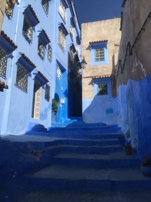 モロッコ,シャウエン,街歩き,観光,見所,世界一周,猫