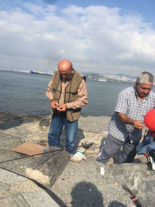 イスタンブール,トルコ,観光,プリンセス諸島,アイキャッチ画像,猫