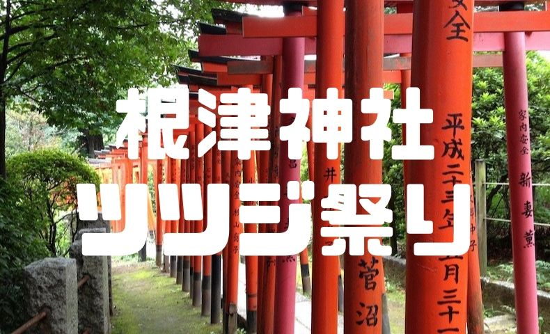 根津神社のつつじ祭りを大満喫!外国人にも大人気の美しいつつじを見逃すな!