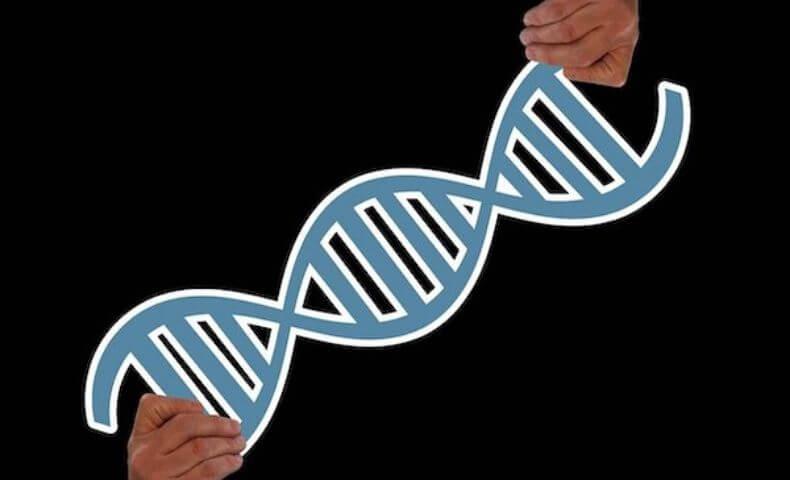 自宅で遺伝子解析できる時代が来る!?最先端のポータブル遺伝子解析機器をご紹介!
